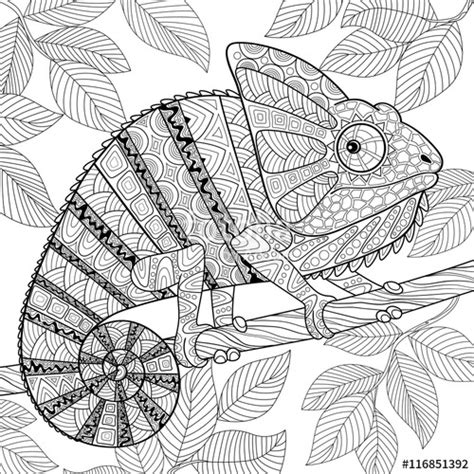 coloring pages for adults chameleon quot chameleon in zentangle style adult antistress coloring