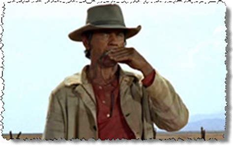 cowboy film harmonica top western movie themes the best western movies for all