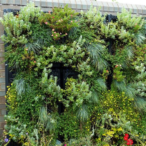 vertical gardening vertical gardening