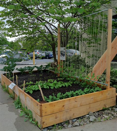 Floating Bed Designs by How To Make A Pea Trellis Bountiful Boxes