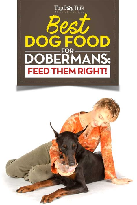 top 10 foods for puppies best food for dobermans 2018 what to feed doberman pinschers