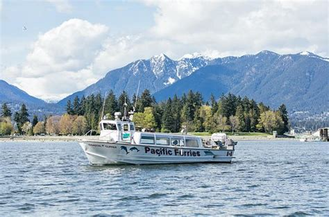 boat tour vancouver bc the 10 best things to do in vancouver 2018 must see