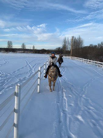 putting horse ranch spruce grove
