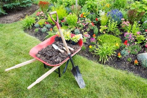 Garden Work by Relief For Gardening Aches And Pains