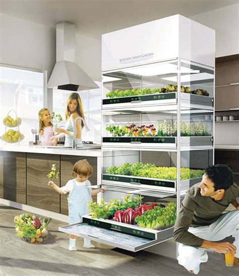 garden in the kitchen sleek hydroponic unit lets you grow a garden in your
