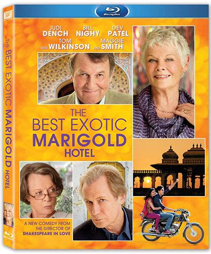 the best marigold hotel the best marigold hotel review theaterbyte
