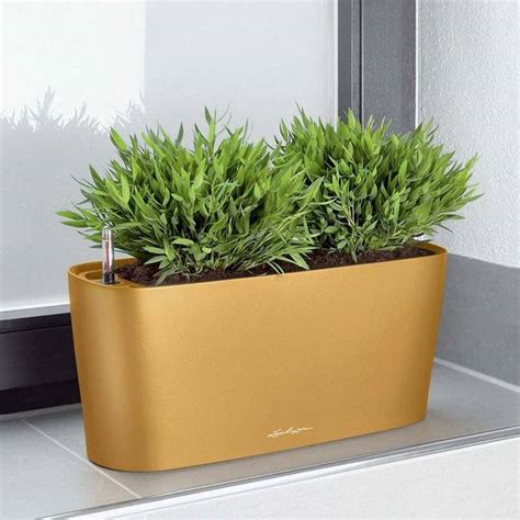 self watering indoor planters 8 best indoor self watering planters for the black