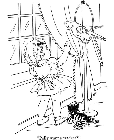 parakeet coloring pages coloring home