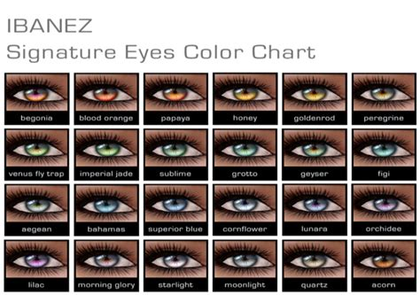 printable eye color chart new ibanez signature eyes eye color chart and eye