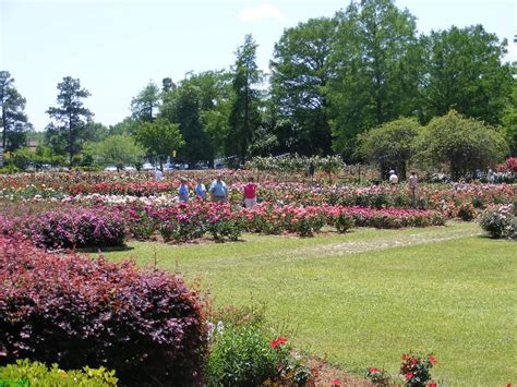 Edisto Memorial Gardens by Visit Edisto Memorial Gardens On The Way To Charleston