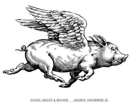 Flying Pig line drawing | ... icons informative maps line ... Flying Pig Drawing
