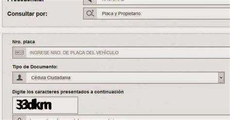 runt runt personal runt colombia informacion consulta y registro el runt consulte su runt personal o de su veh 237 culo 2013
