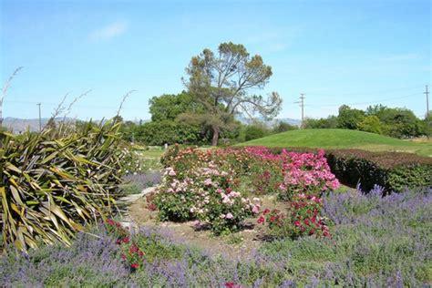 san jose heritage rose garden san jose attractions review