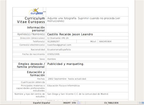 Modelo Curriculum Europass Para Rellenar Curriculum Vitae Infoleandro