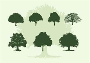 vector tree free various oak trees vector silhouettes free