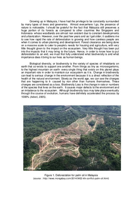 Preserve Nature Essay by Capture Essay Picture Preserve Reflective That Apamonitor X Fc2