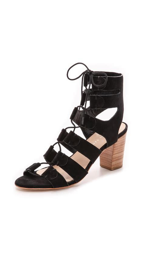 loeffler randall sandals loeffler randall thea gladiator sandal in black lyst