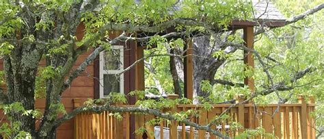 Cabin Eureka Springs Ar by Lodging Cabins Cottages Cabins Hotels Motels In