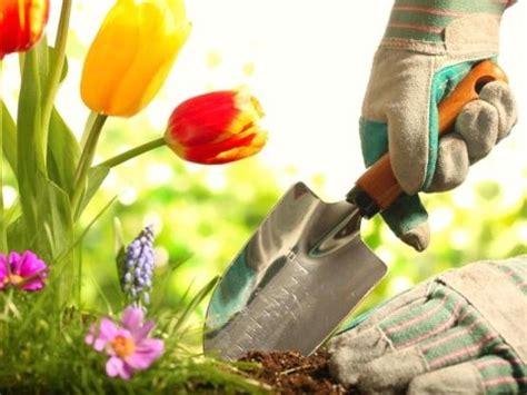 vendita alimenti per animali vendita prodotti per giardinaggio macello torino il