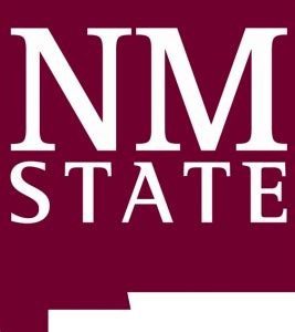 Mba Educational Leadership Unm by Woodrow Wilson National Fellowship Foundation The