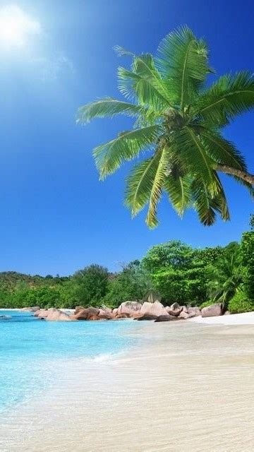 beach screensavers  wallpapers tropical beach