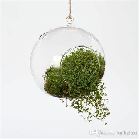 dozen 8cm ball air plant terrariums hanging glass candles