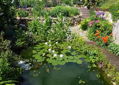 Klares Wasser Im Teich 1420 by Gartenteich 187 So Sorgen Sie F 252 R Klares Wasser