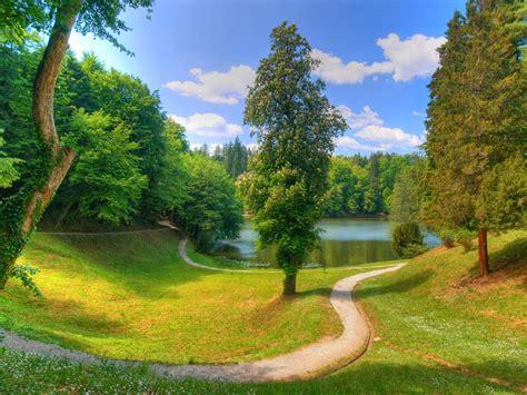 wallpaper pemandangan alam hijau wallpaper pemandangan kebun hijau indah dan keren all