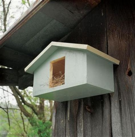 dove bird house design 25 best ideas about bird house plans on pinterest building bird houses diy