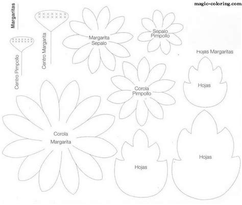 daisy paper flower pattern magic coloring matricaria chamomile daisy flower