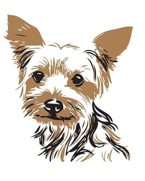 drawings of yorkies yorkie dogggggggggggssssssssss i and he is