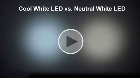 neutral white led light led color temperature about flashlights
