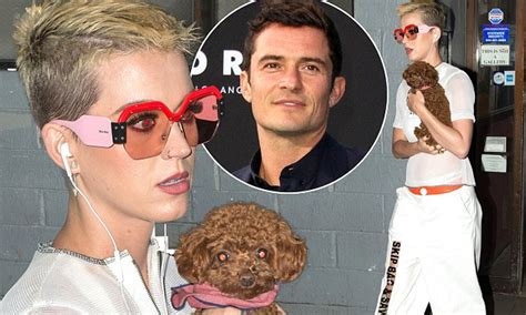 orlando bloom puppy katy perry carries puppy after orlando bloom mentions her