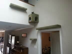 cat wall shelves climbing 1000 images about cat trees and diy projects on