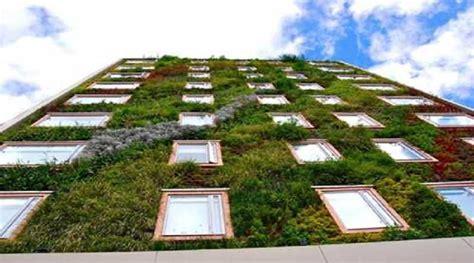 jardines casas de co jardines verticales dise 241 os plantas y consejos