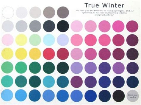 cool winter color palette true cool winter color palette color analysis true