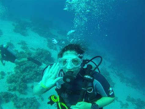 blue dive centre diving picture of blue lagoon diving center sharm el