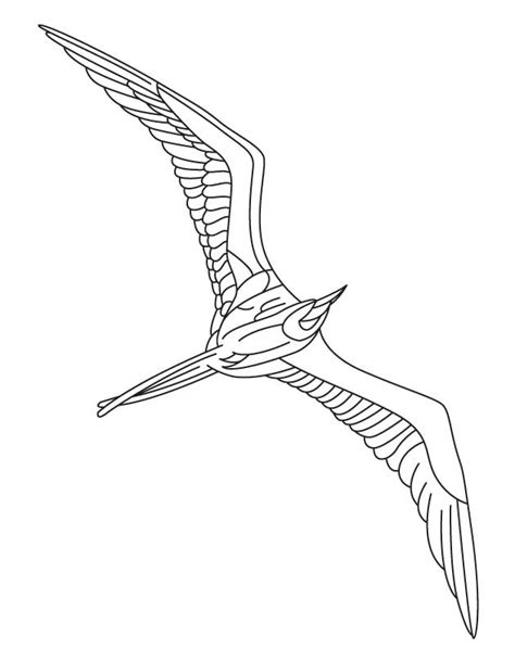 sea birds coloring pages eagle coloring pages bird animals 5 sea bird coloring page