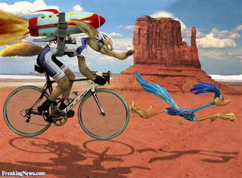 funny coyote road runner cyclist pictures freaking news