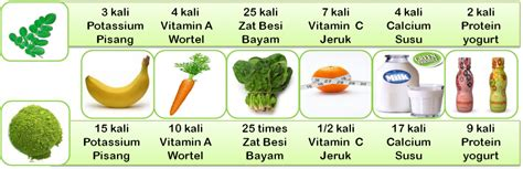 Obat Herbal Daun Kelor daun kelor sehatherba