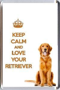 keep calm and golden retrievers dug from up squirrel all time favorite story originals