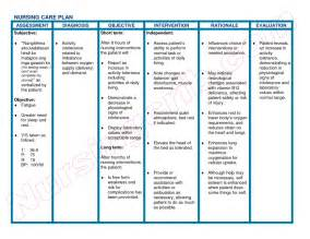 nursing care plan format template free nursing care plan templates 4 best agenda templates