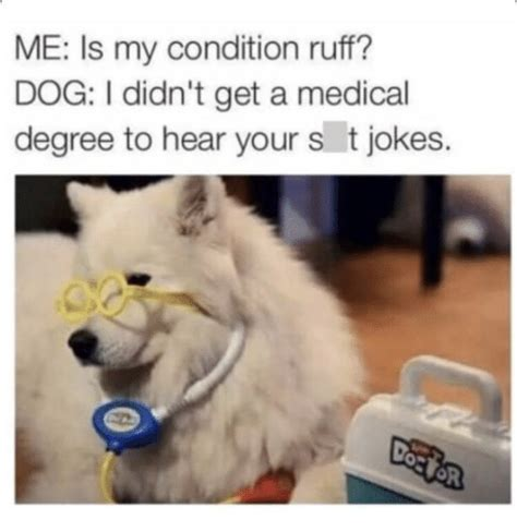 Dog Doctor Meme - me is my condition ruff dog i didn t get a medical degree