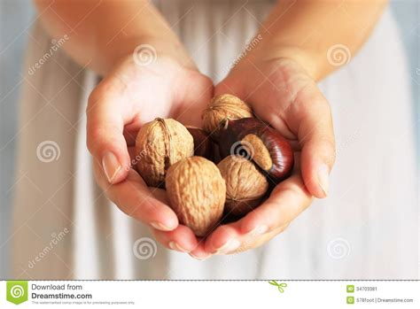 Holding The Nuts nuts stock image image 34703381