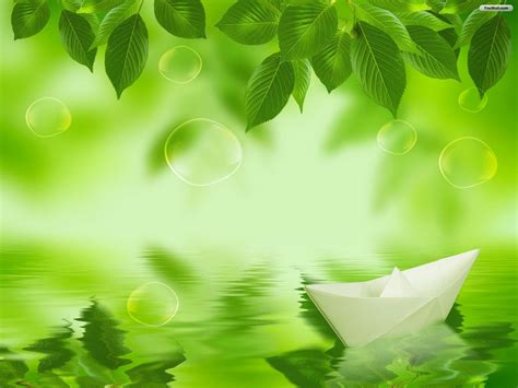 wallpaper daun mint leaf hd wallpapers for pc 10939 amazing wallpaperz