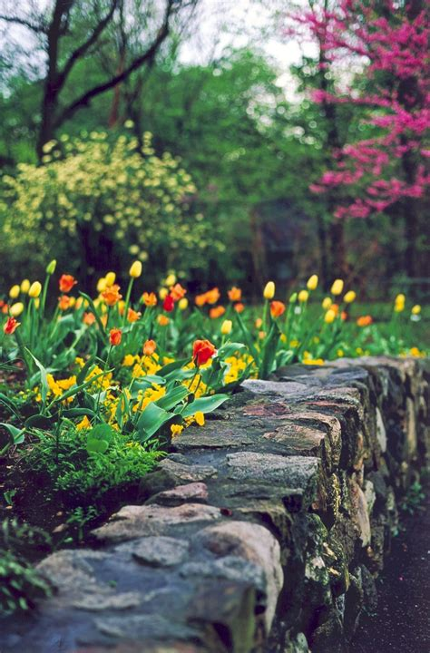 Fernwood Botanical Gardens by 31 Best Images About Favorite Spaces At Fernwood On