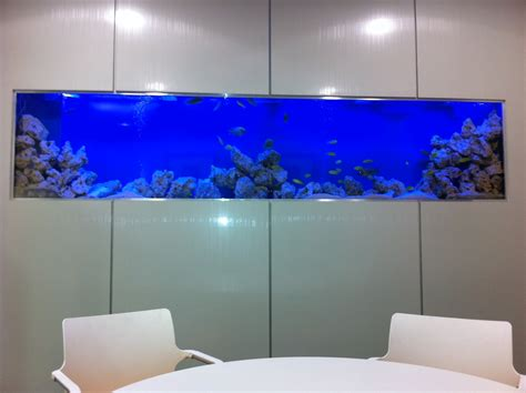 Office Fish Tank by Cichlids Office Fish Tank
