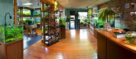 aquarium design store aquarium zen