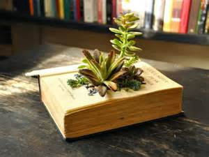 planters for succulents how to make your own book planters for succulents world