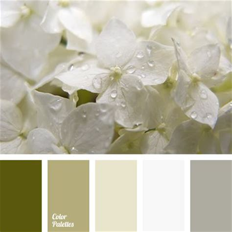25 best ideas about color palette gray on bedroom color schemes bedroom color